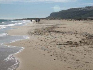 Carabassi Beach.Car Hire Alicante